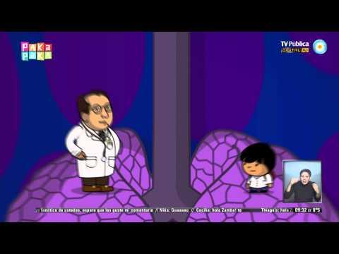Zamba - Excursión al cuerpo humano: Los pulmones
