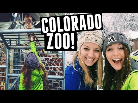 Colorado: Cheyenne Mountain Zoo