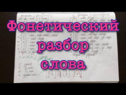 Как определить фонетический разбор слова