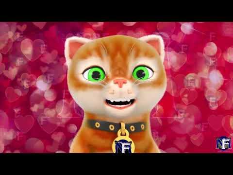 El gato que habla y es flojo from YouTube · Duration:  1 minutes 29 seconds
