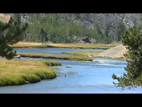 Yellowstone: West Yellowstone to Old Faithful