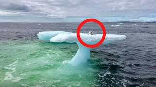 Fishermen Think They Found a Seal on a Floating Iceberg Until They Get Closer and Realize They are !