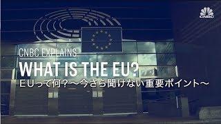 『欧州』機関の一番の目的