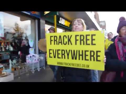 Vegan Dogs lead Anti Fracking Demo Ellesmere Port Chester Cheshire Britain