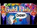 🐠 Goldfish 3 Huge Bonus Wins ! 🦈 Big Chomps 🦈 - Aria Las Vegas