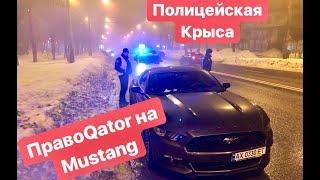 Правоqator На Mustang И ПолицейСкая Крыса