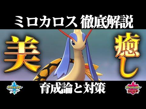育成 ミロカロス 【ポケモン剣盾】ミロカロスの入手方法