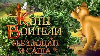 КОТЫ ВОИТЕЛИ | Звездоцап и Саша. 13 серия. Озвучка манги.
