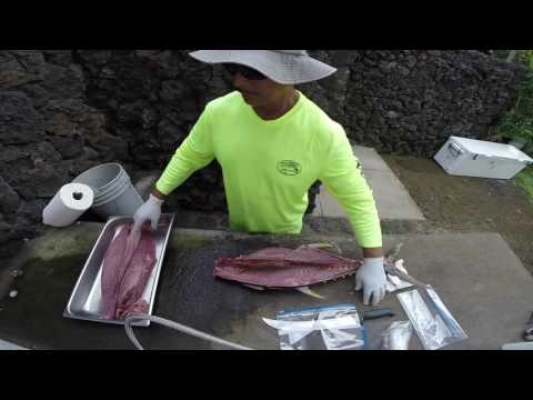 Small Yellow Fin Tuna Cleaning August 2016 #45