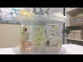 Glam Perfume Organization DIY|Dollar Tree