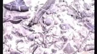 видео: Ховинд о потопе