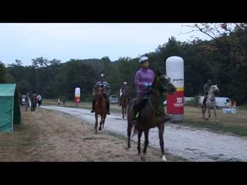 III  Völgység Derby 2013 (skip to 195s)