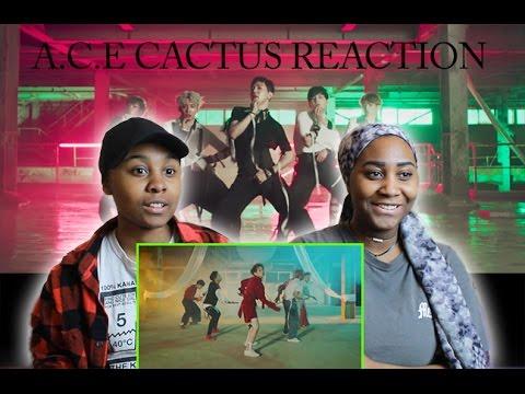 A.C.E(에이스) - 선인장(CACTUS) MV REACTION