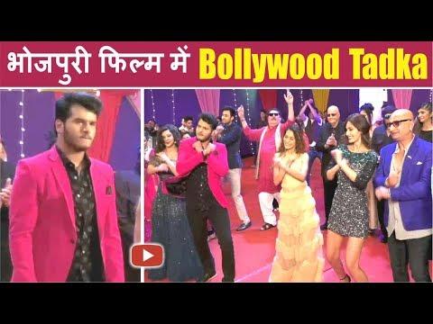Bollywood Celebrities In Bhojpuri Film