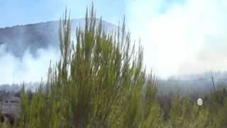 Tűz - Repülők   Hvar sziget  /Camp Vira/  Horvátország 2010