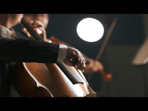 40 Minute Timer with Classical Music - Tchaikovsky + Beethoven