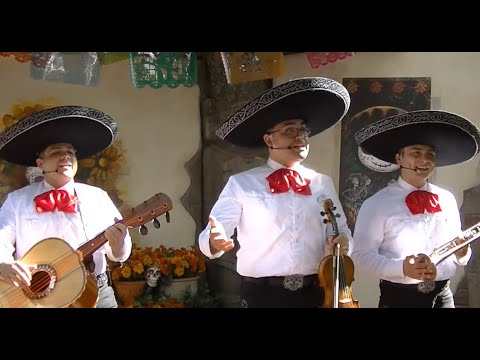 Epcot Coco Mariachi Songs! 2018 Oscar Winner Best Original Song & Best Animated Film!