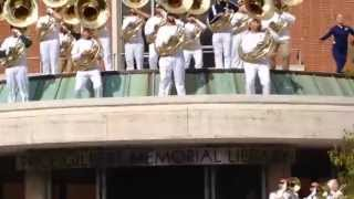 2014 GT Tubas On Library Roof