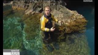 Euronews Futuris - Защитники мирового океана