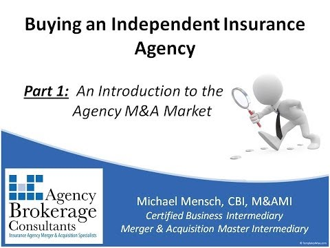 Buying an Insurance Agency: Part 1 - An Introduction to the Agency M&A Market