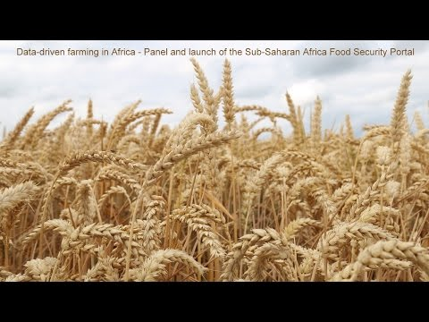 Data-driven farming in Africa - Panel and launch of the Sub-Saharan Africa Food Security Portal