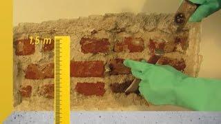 Vídeo Aula  #9 - Como Tirar a Umidade Vinda da Terra Encostada Na Parede.