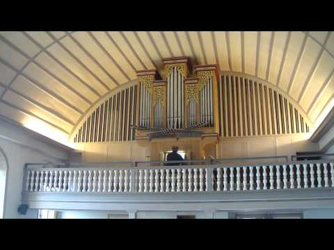 Spanish Organ in Serrières II