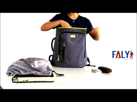FALYBAGS: Wholesale Professional Laptop Backpack From China Bags Manufacturer