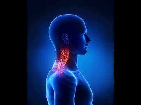 Остеохондроз: причины, профилактика и лечение остеохондроза.