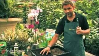 Jardinería fácil: Sustrato de turba, fibra de coco y corteza