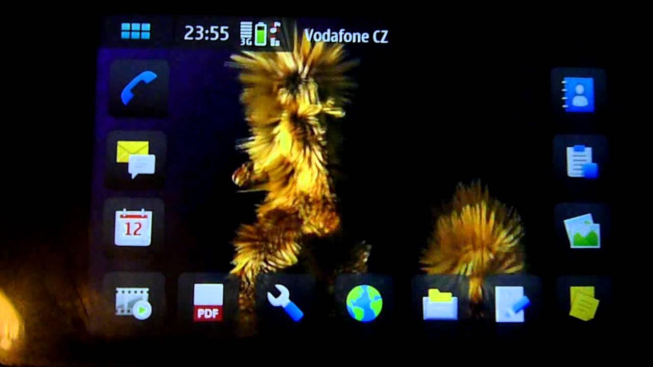 Mtv Mister Furry Animated Mobile Phone Wallpaper