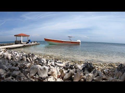 Belize Marine Conservation