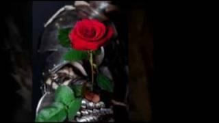 Assassin Chronicles Book Trailer
