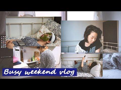 Busy Weekend Vlog I 바쁜 주말 브이로그 I 김갈릭