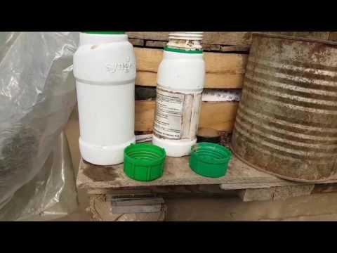 Самое эффективное средство от колорадского жука: отзывы