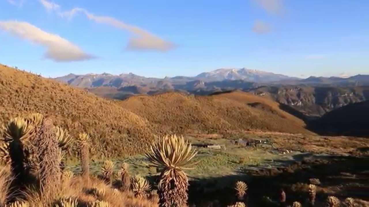 Los Nevados National Park: A Hiking & Adventure How-To Guide  Los Nevados National Park