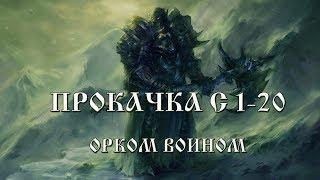 Гайд по Дестру/Тиру с 1- 20 лвл + фарм на D оружие Lineage 2 Classic