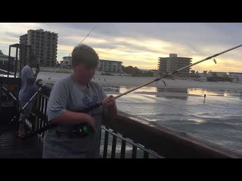 Hayden - Daytona Beach