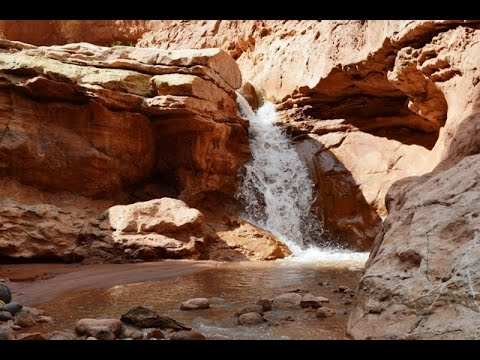 Backpacking Capitol Reef National Park: The Spring Canyon, Sulphur Creek Loop