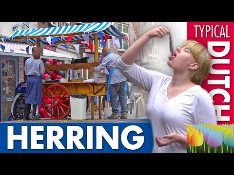 The Herring Stall - Holland Holiday