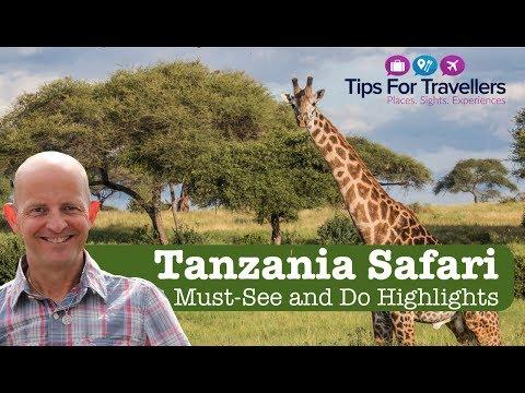 Tanzania Safari Tips - How To Have An Incredible Safari In Tanzania!
