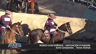 RODEO AL DIA 56 CLUB DOÑIHUE 2018