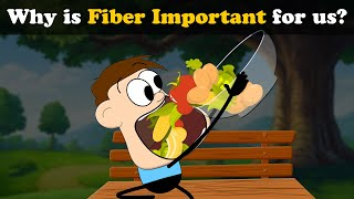 Why is Fiber Important for us? | #aumsum