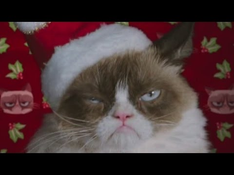 Grumpy cat starring in christmas movie youtube grumpy cat starring in christmas movie thecheapjerseys