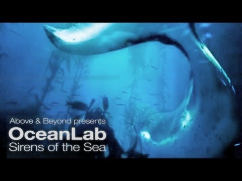 Above and Beyond pres Oceanlab - Sirens Of The Sea