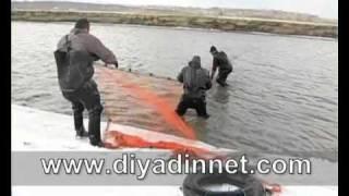 Ağrılı balıkçıların balık avı