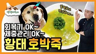 다이어트에 좋은 강아지간식 / 고지혈증과 당뇨예방에 좋…