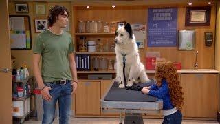 Собака точка ком (Сезон 3 Серия 5)