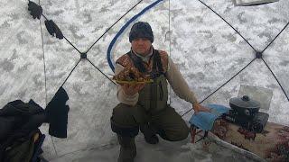 Рыбалка Хапугой Отжарили Ротанов в Палатке Рыбалка Хапугой