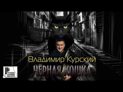 Владимир курский чёрная кошка (альбом 2017) популярные.